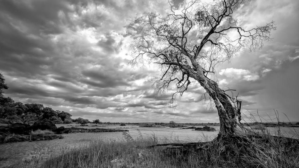 Zambezi, Zimbabwe