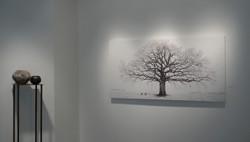 Ingram Gallery view