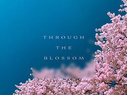 1826_Through_The_Blossom_03_Album_Artwor