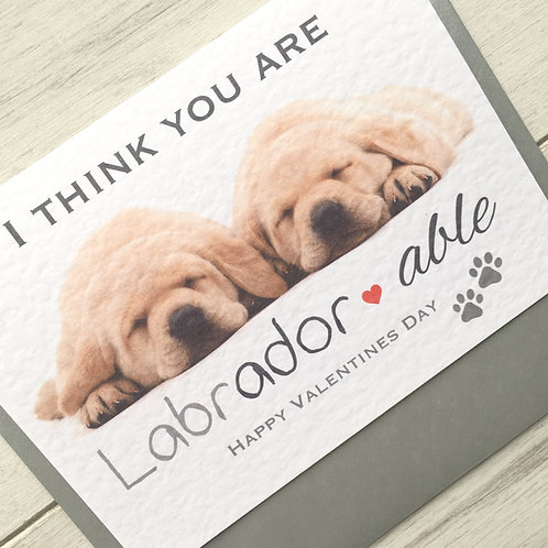 I think you are 'Labrador-able' - Valentine's Day Card