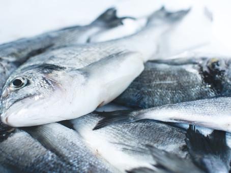 Pourquoi le poisson est bon pour la mémoire ?
