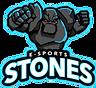stonesgg_rockman.png