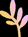 Feuille coloré