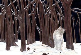 Lynx at Winter