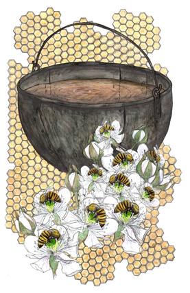 European Black bees and Iron Cauldron