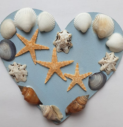 Shells Craft Pack