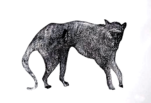 Some Kind of Hound