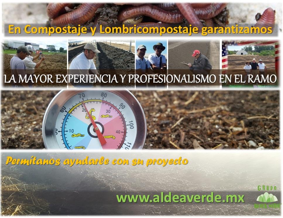 Amplia Experiencia y Profesionalismo
