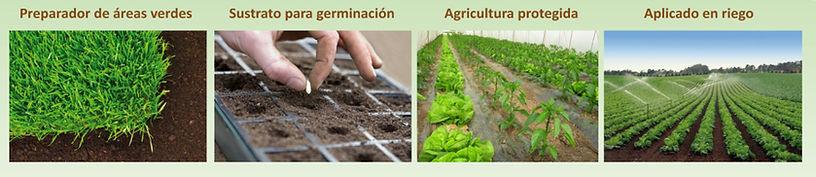 Composta | Humus de Lombriz | Compostaje y Lombricompostaje DE CALIDAD | Composta | Lombricomposta | México | Composta Queretaro