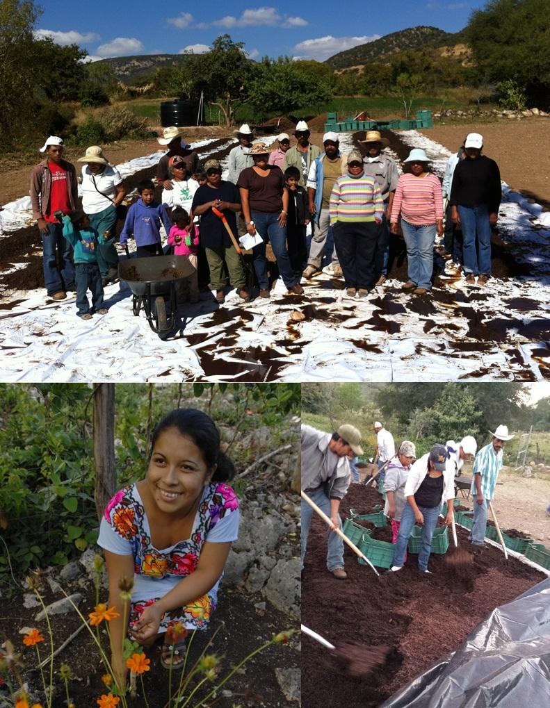 Desarrollamos Proyectos de Gran Responsabilidad Social