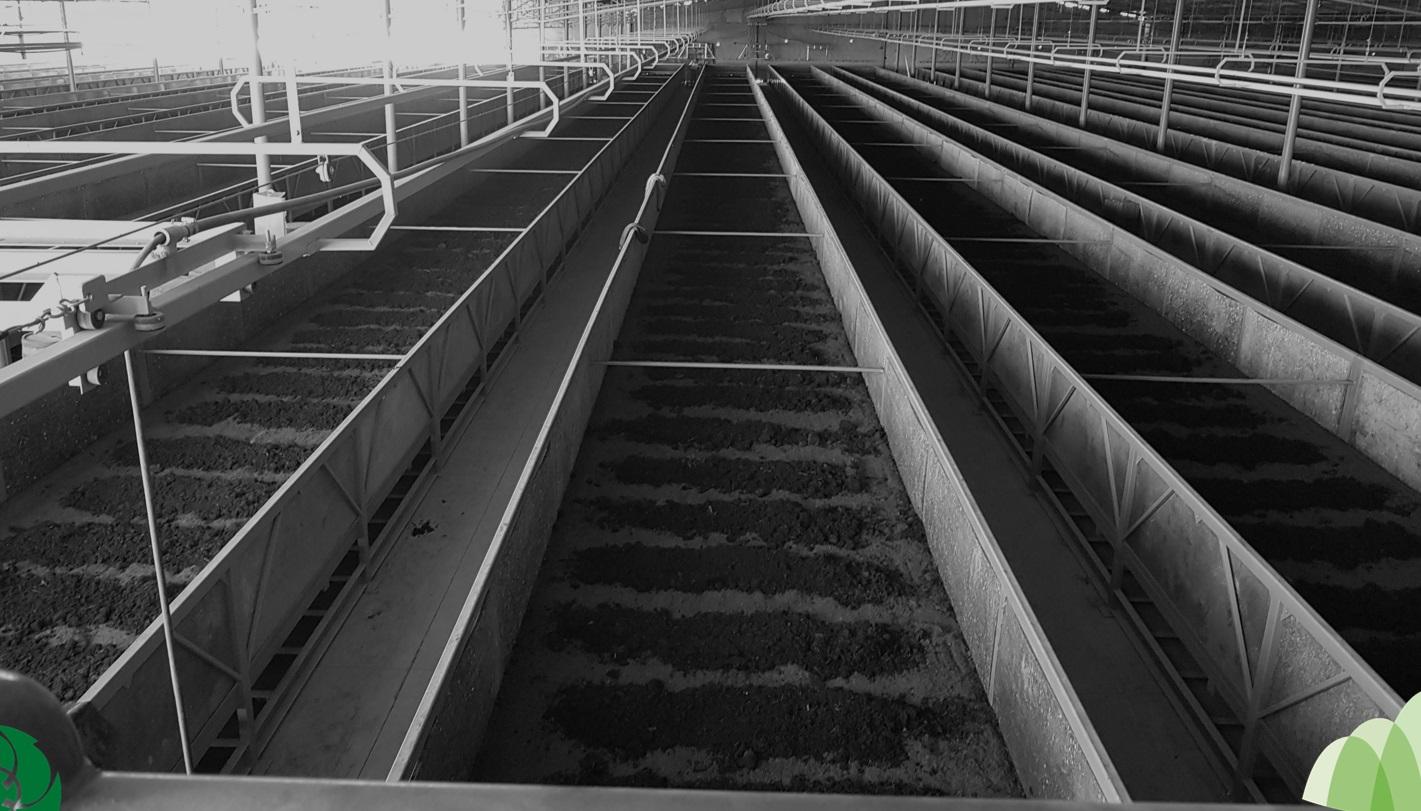Poveeduría Industrial de Lombriz