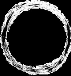 cerchio-removebg-preview.png