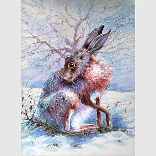 The Hare of the Mid Winter