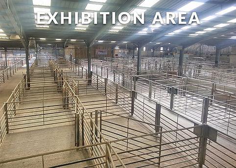 Exhibition Area.jpg