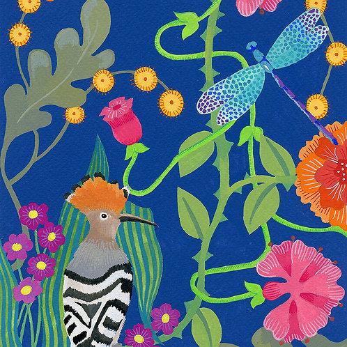Hoopoe - Giclee Art Print