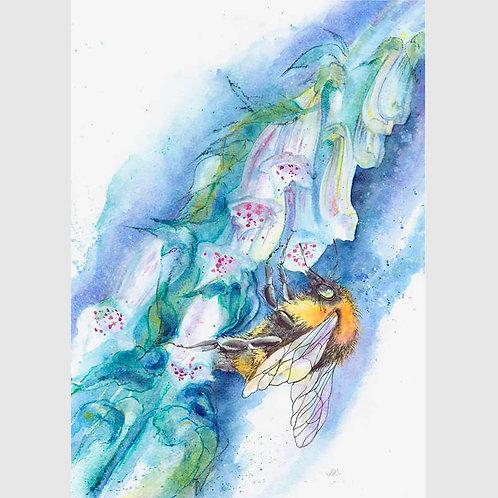 Foxglove Forager