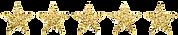 5 STARS - trans.png