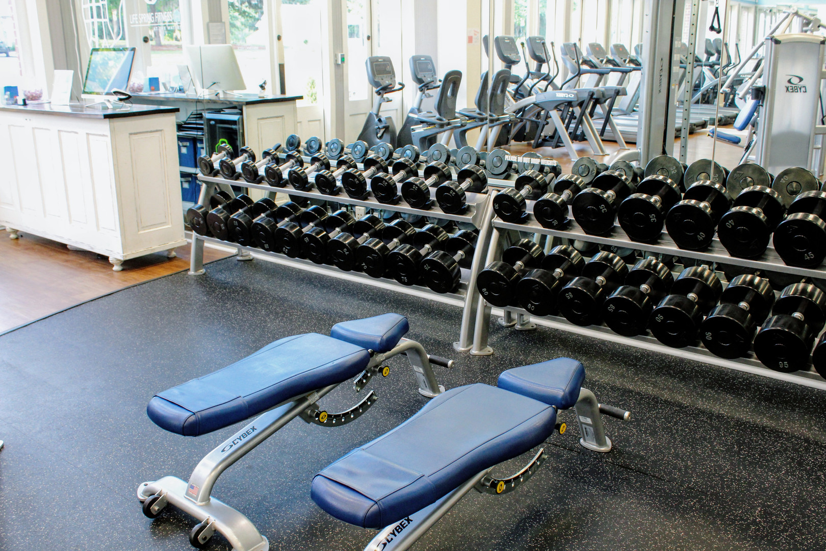Benches and Dumbbells