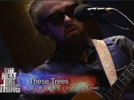 99.7 Million Views - These Trees - China