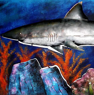SHARK IN THE DEEP