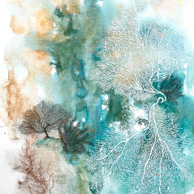 Enchanted Reef 3.