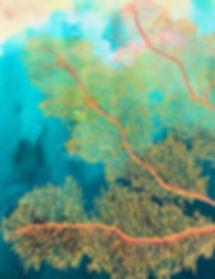 Orange Coral. Donna Maloney.jpg