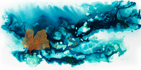 Tropical Coral Reef 4.