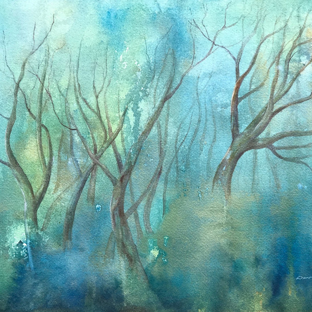 Snow Gums in the Mist 4