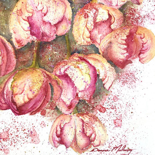 Pink Tulips 2.