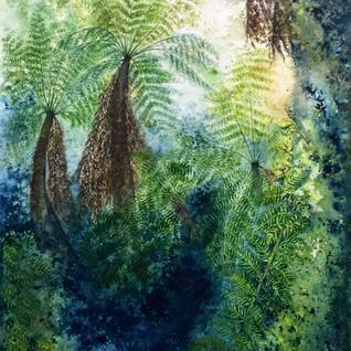 Russel Falls, Tree Ferns