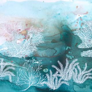 Enchanted Coral Reef 1.