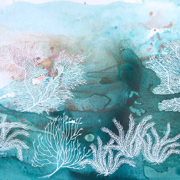 Enchanted Coral Reef 1.