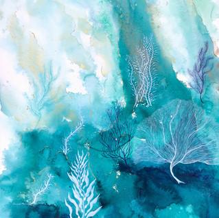 Coral Reef 10.