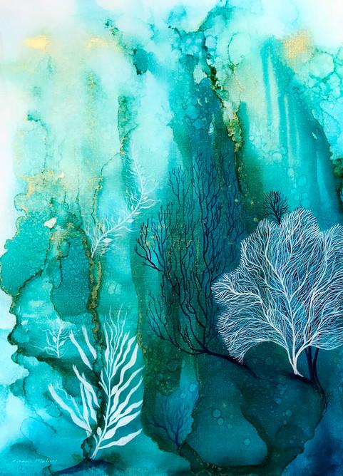 Coral Reef 4.