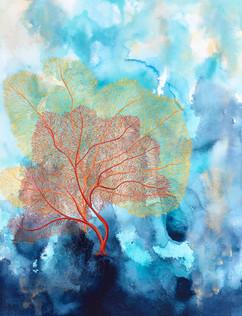 Tropical Coral Reef 2.