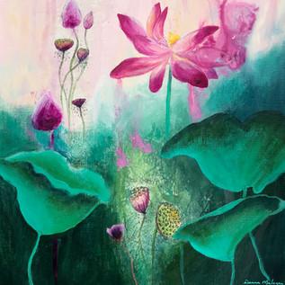 Ebb & Flow of the Lotus 3.