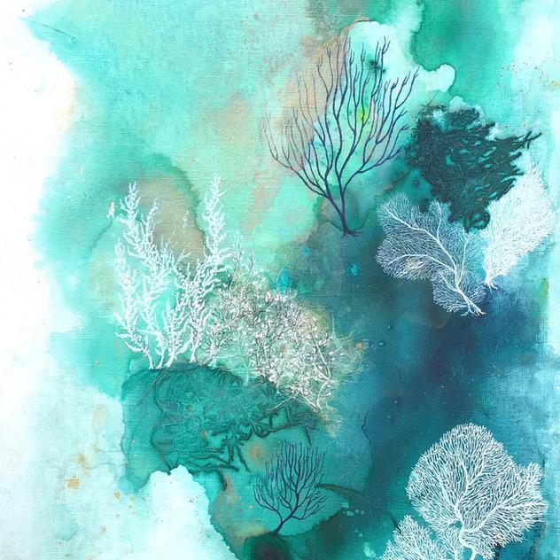 Aqua Waters 3.