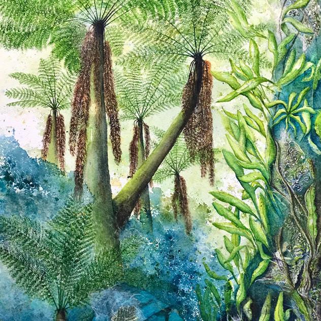 Russel Falls Tree Ferns 2.