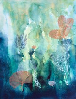 Tropical Coral Reef 1.