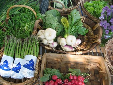 A febre dos alimentos orgânicos: o que são, quais os benefícios e onde posso encontrá-los