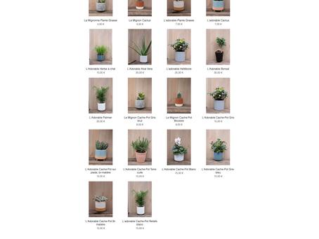 Nos produits fleurissent aussi en ligne !