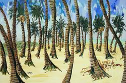 TAHITI -Toothpick Palm Fields