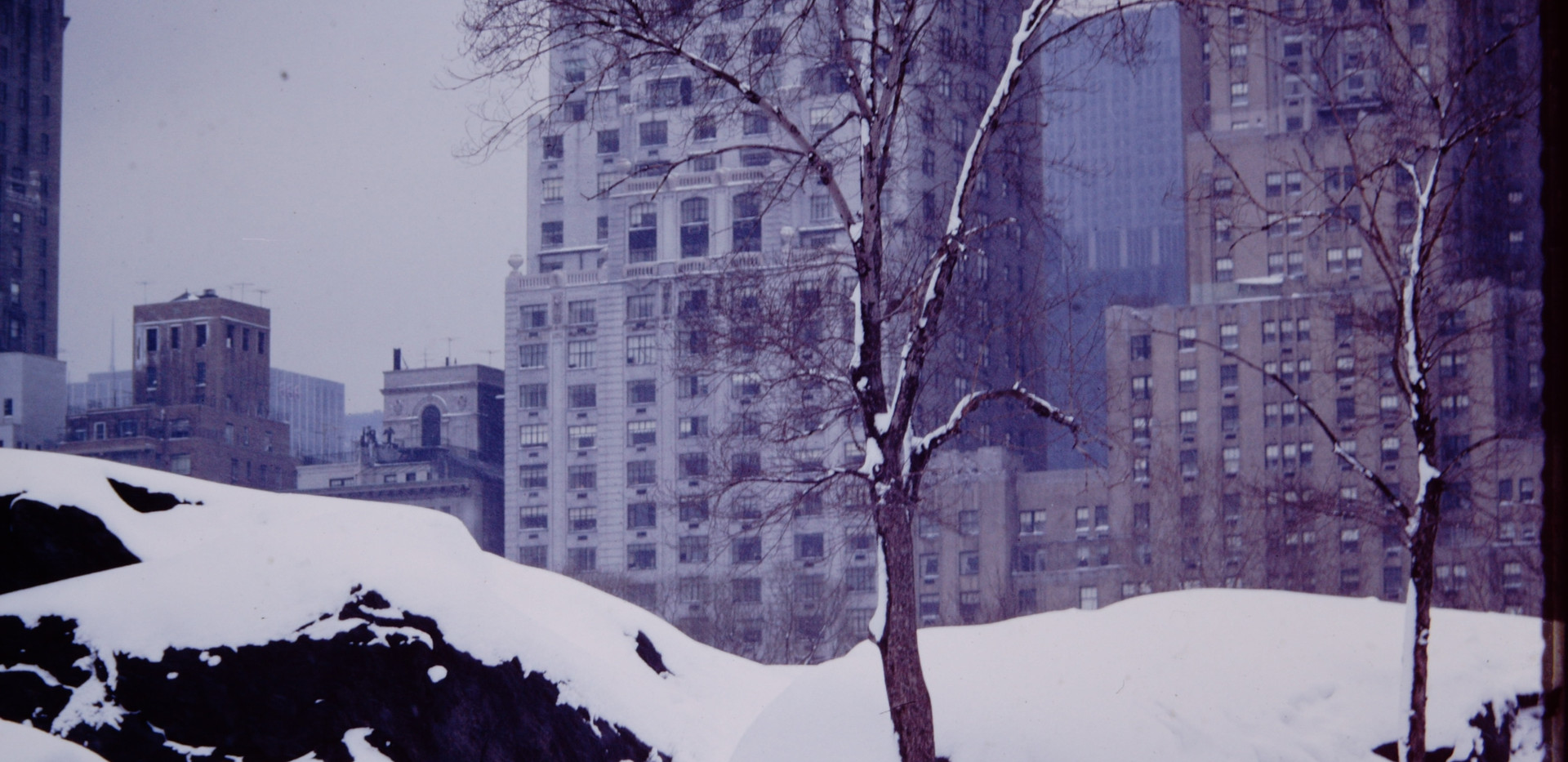 New York January 1965 (5).jpg