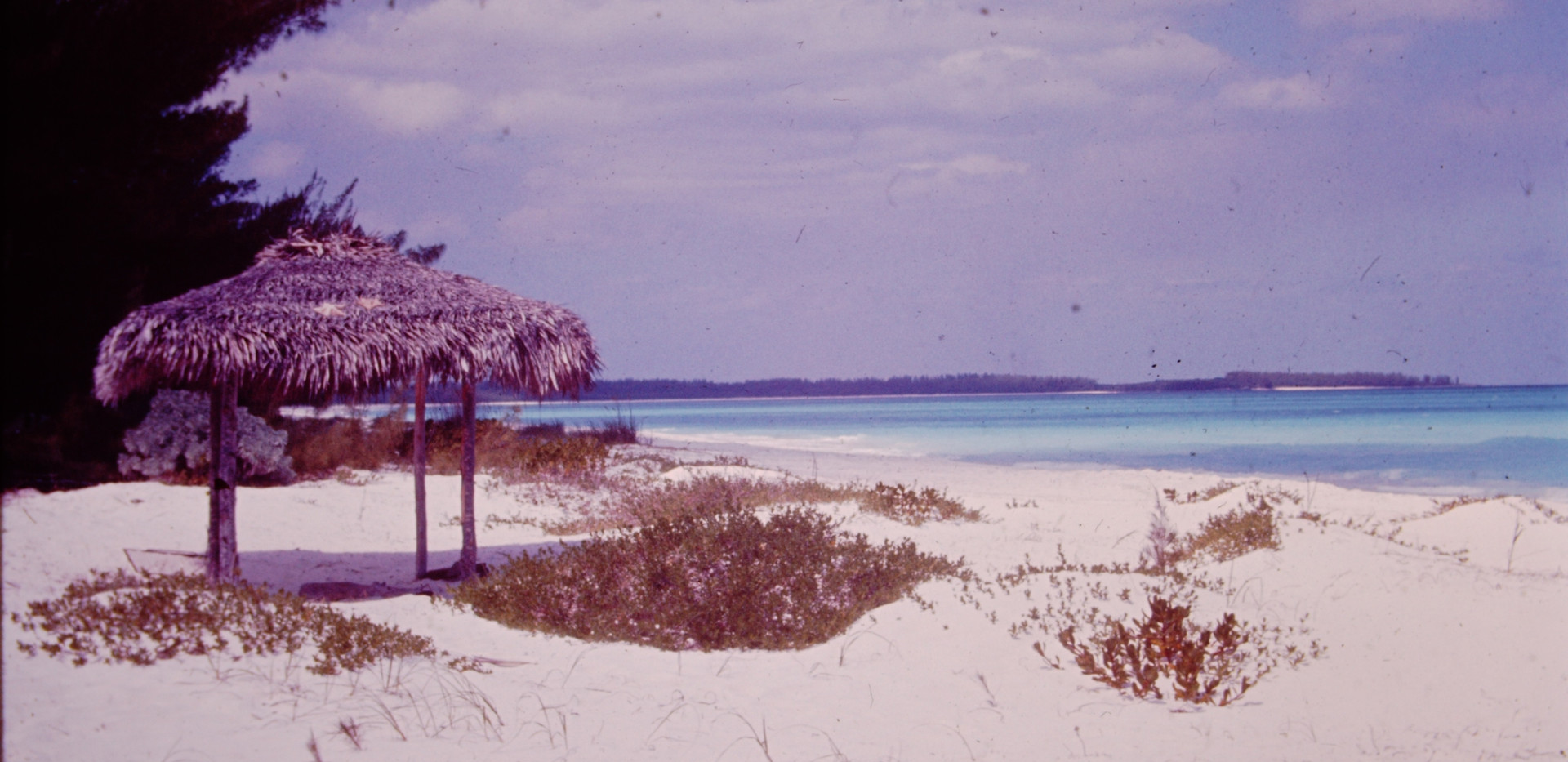 Bahamas March 1965 (4).jpg