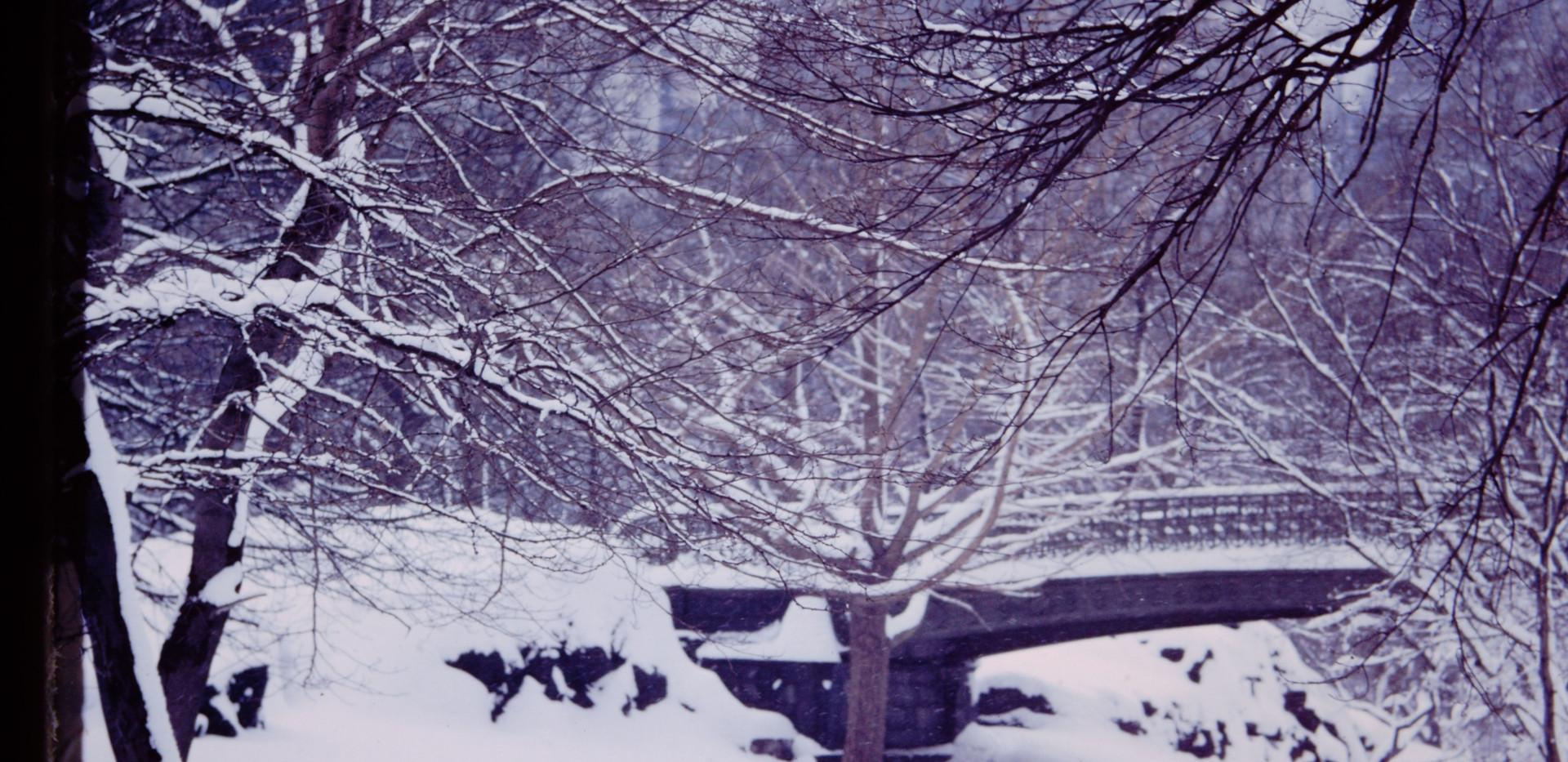 New York January 1965 (2).jpg