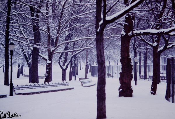New York January 1965 (4).jpg