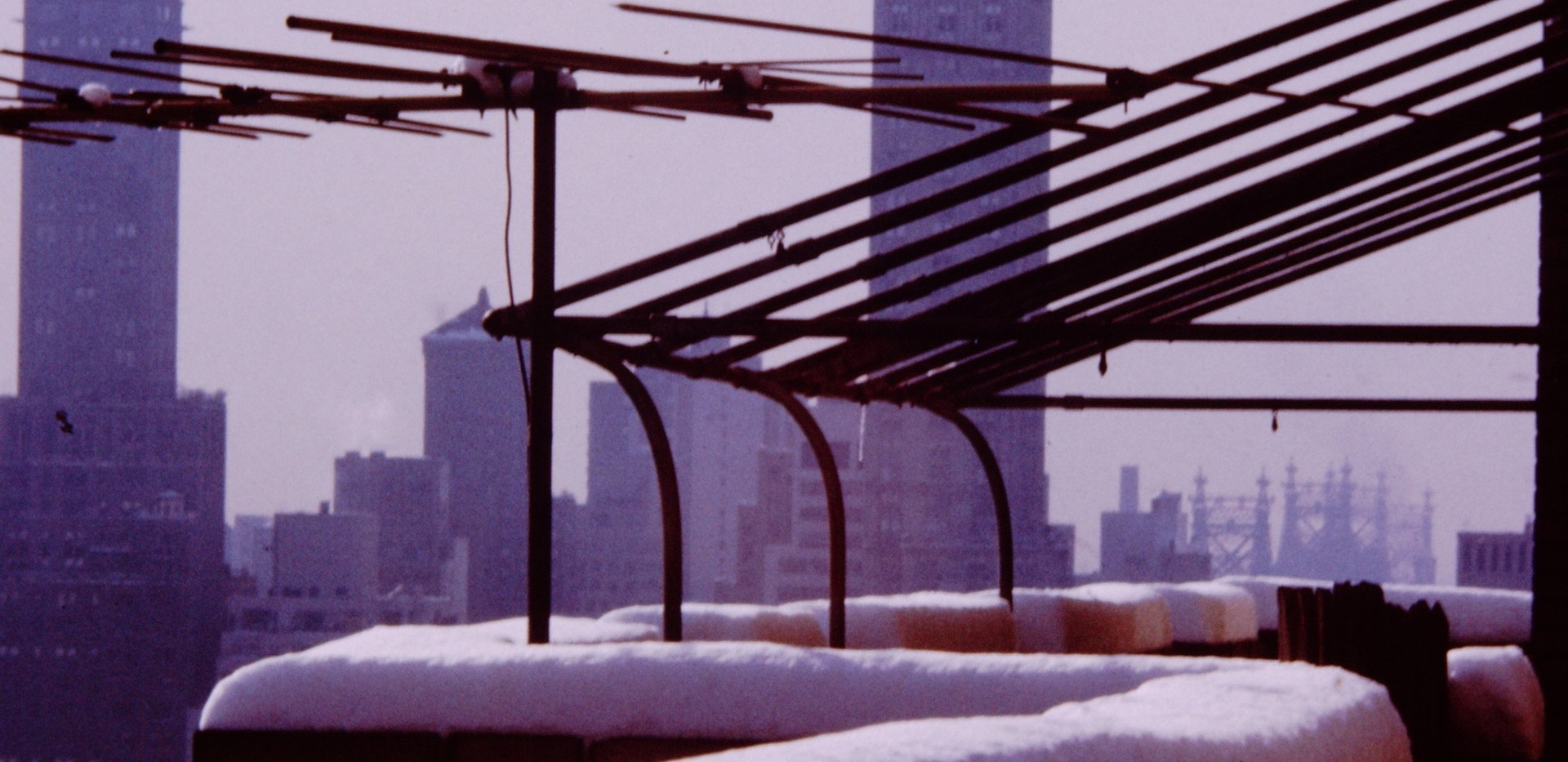 New York January 1965 (10).jpg