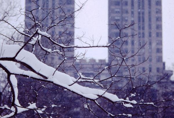 New York January 1965 (9).jpg