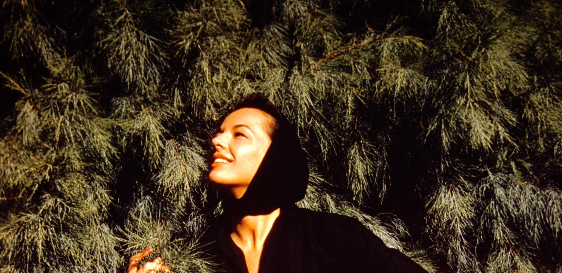 Beverly Hills February 1959 (15).jpg