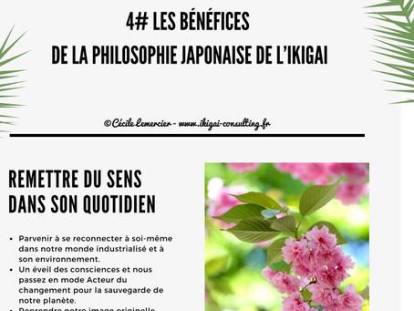 #4 Les Bénéfices de la philosophie japonaise de l'ikigai